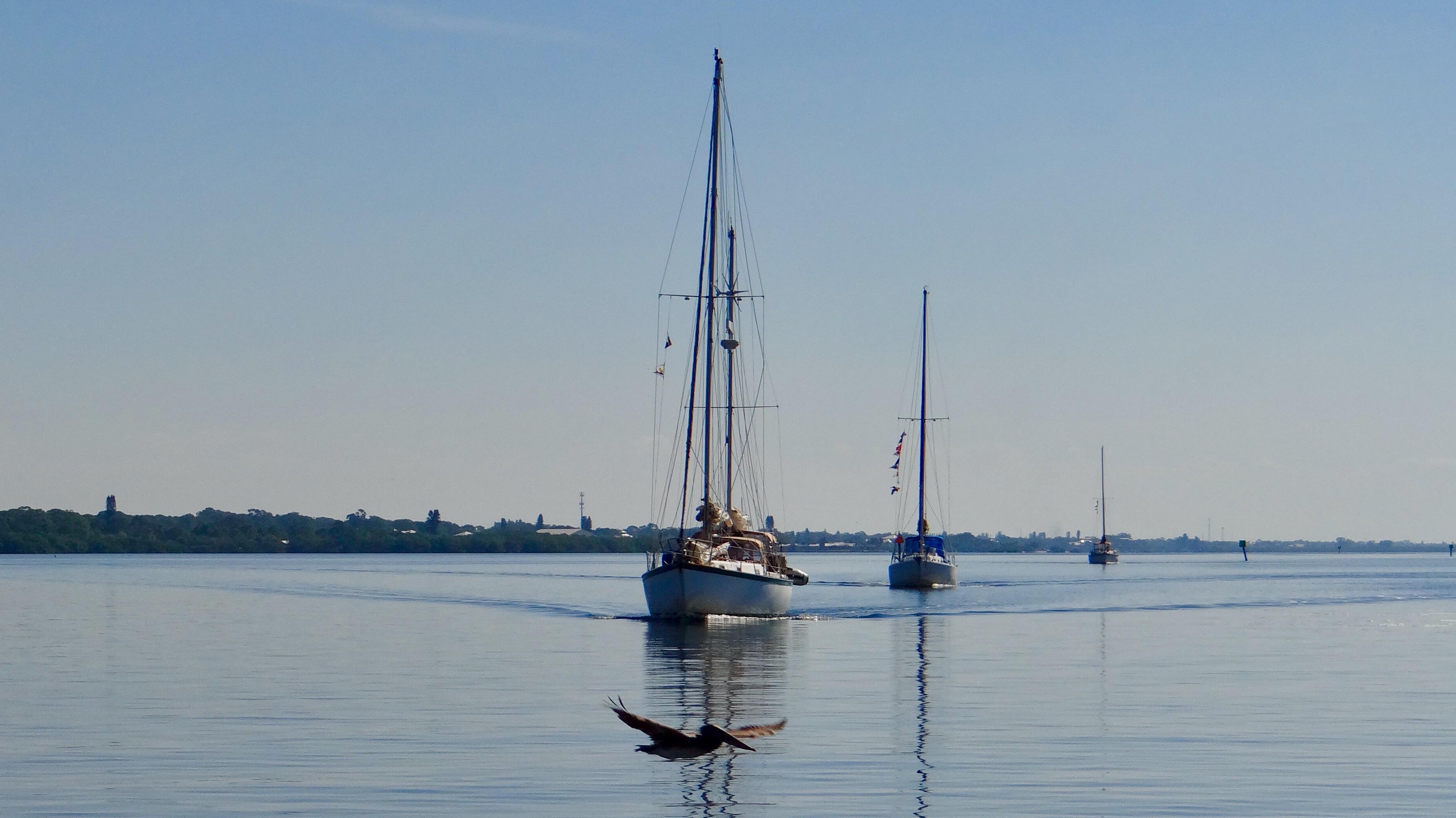 Boat-Cruises-Sarasota2