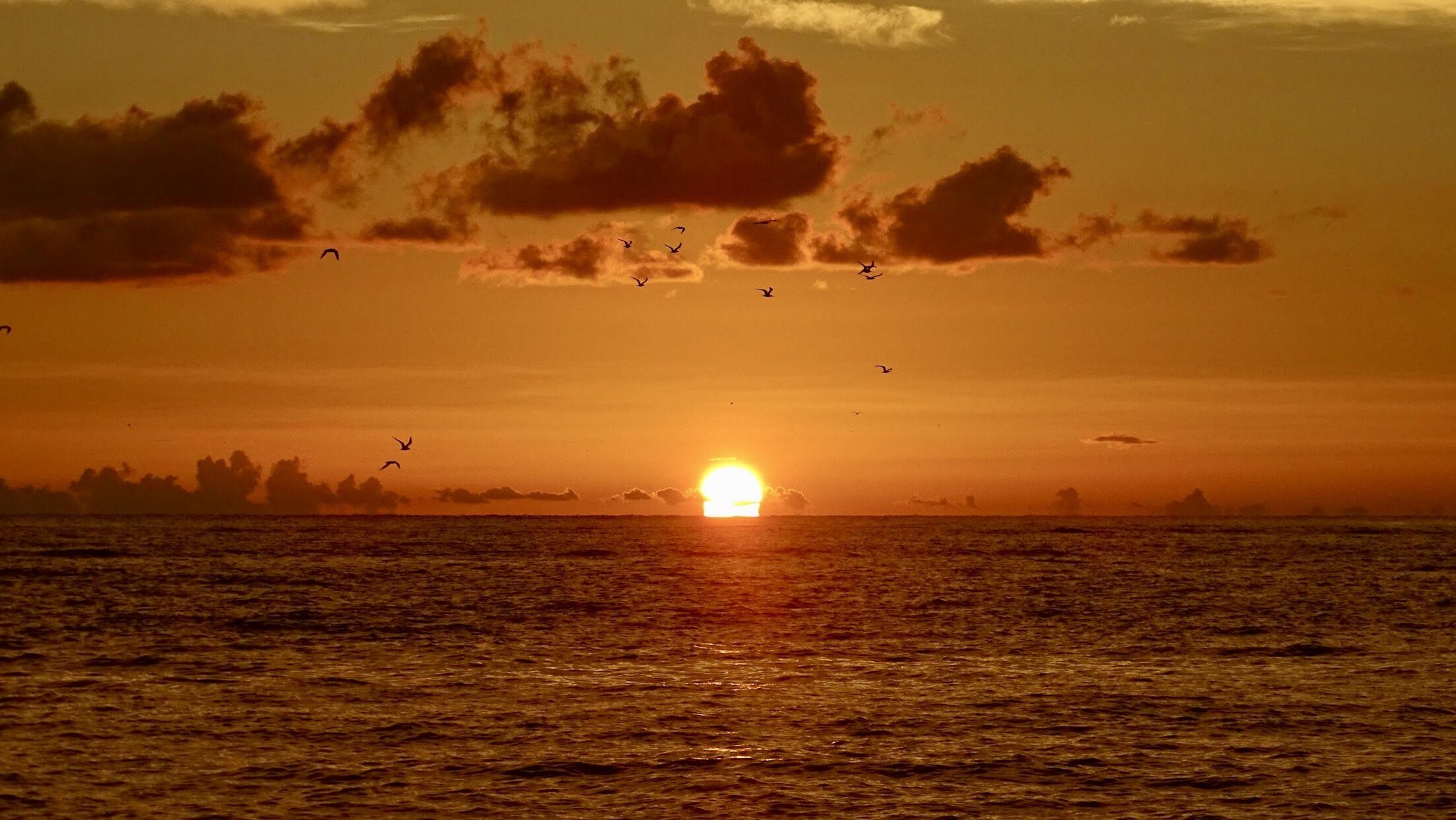 Sarasota-Boat-Rides2
