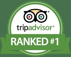 tripadvisor-nr13